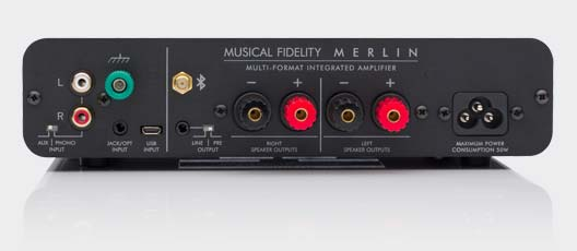 Merlin Amplifier Rear Panel
